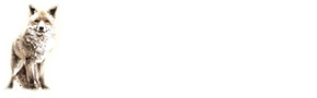 Jack Stern Logo
